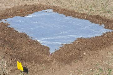 tarp over garden plot